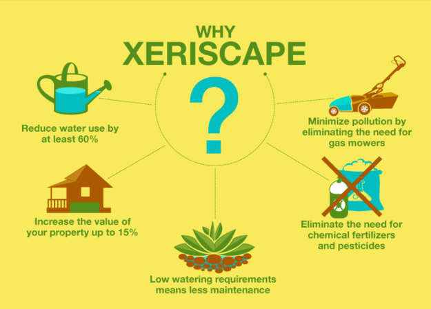 why-xeriscape